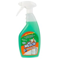 FÖNSTERPUTS MR MUSCLE 750ML